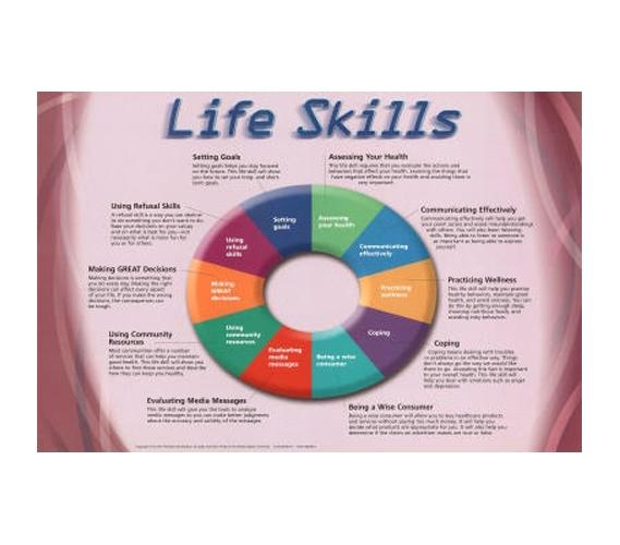 Life Skills Educational Colege Chart College Dorm Room
