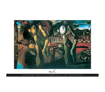 S. Dali - Metamorphosis Famous Painting Dorm Wall & Door Decor