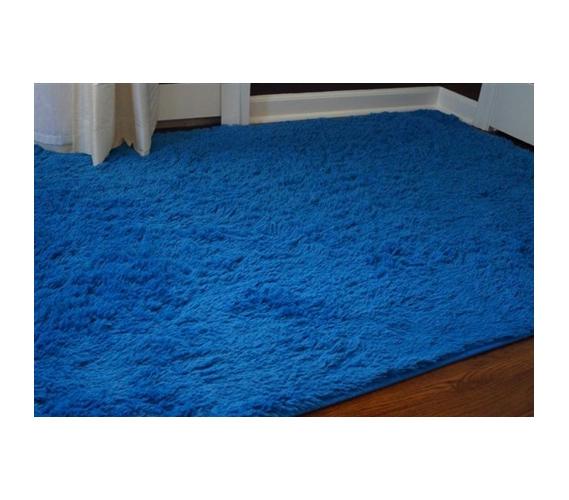 College Plush Rug Brilliant Blue Dorm Room Decor Idea College Essential