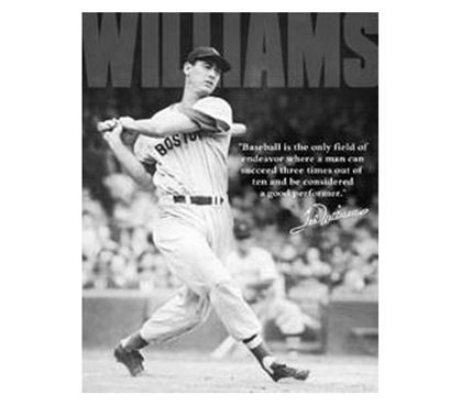 Add Sports Tin Signs - Ted Williams Tin Sign - Buy Dorm Items