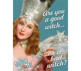 Tin Signs For College - Which Witch? Tin Sign - Decor For Dorm Rooms