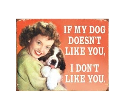 Fun Supplies For College - My Dog Doesn't Like You Tin Sign - Decorate Your Dorm Room