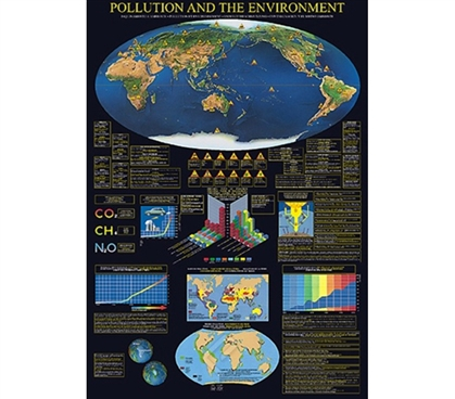 Understanding Pollution and the Environment Dorm Poster