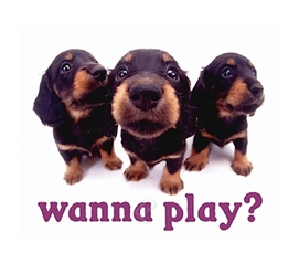 """Wanna Play?"" Puppy College Dorm Poster super cute puppies want to play in this dorm room poster for college"
