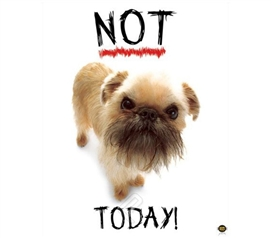 """Not Today!"" Dog College Dorm Poster for decorating college walls shows cute but grumpy little puppy"
