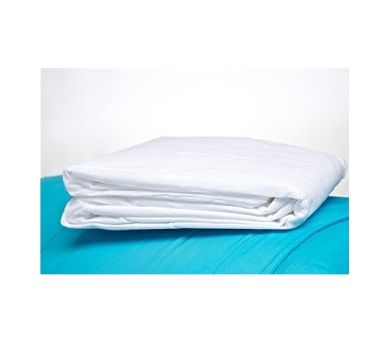 anti-bed bug twin xl mattress encasement college products