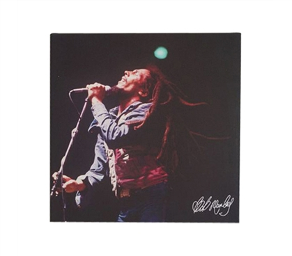 Dorm Room Decor Dorm Room Decorations Bob Marley Roaring Wall Canvas