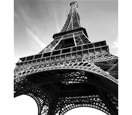 Cool Stuff For Dorms - Paris Wall Art - Peel N Stick - Decorate Your Dorm Room