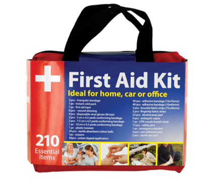 First Aid Kit with Carrying Case