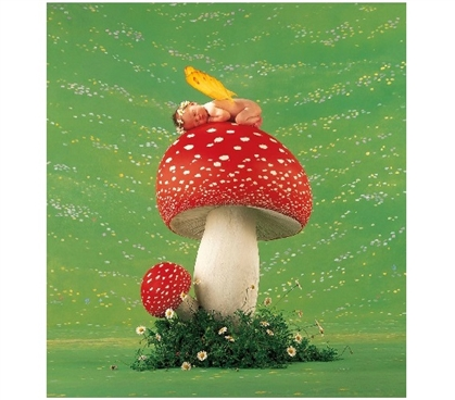Anne Geddes - Toadstool - College Dorm Poster Dorm Room Decorations Must Have Dorm Items Dorm Room Decor