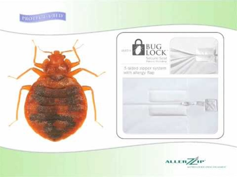 bed bug relief mattress encasement twin xl protectabed - Mattress Encasement