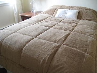 College Plush Comforter Extra Long Twin Tan Decor Twin