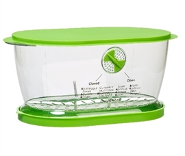 Cooking Items Lettuce Keeper Dorm Storage Solutions Must Have Dorm Items