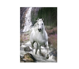 Langrish Waterfall Dorm Poster Dorm Room Decorations Dorm Room Decor