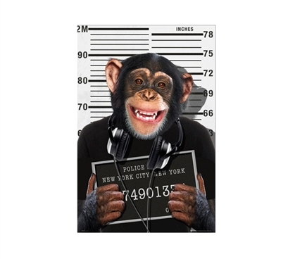 Chimp Mug Shot Dorm Poster College Supplies Dorm Room Decorations