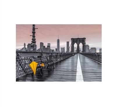 Assaf Frank Brooklyn Bridge Umbrella College Poster Dorm Room Decorations College Wall Decor