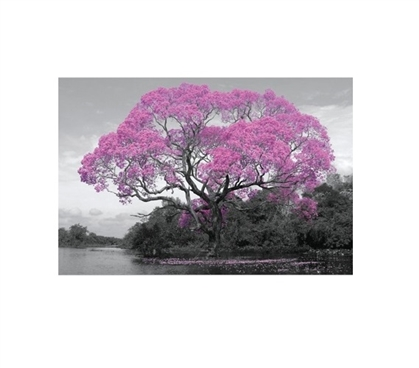 Blossom Tree Dorm Poster Dorm Room Decorations College Wall Decor
