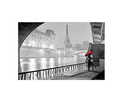 Eiffel Tower Kiss College Poster Dorm Room Decorations Dorm Room Decor