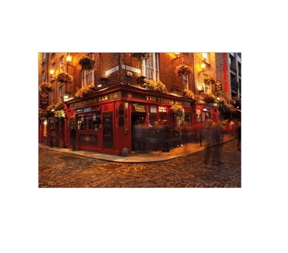 Dublin Temple Bar College Poster Cool Posters for Dorm Rooms Must Have Dorm Items