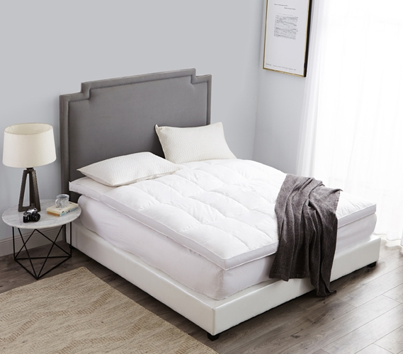 College Extra Long Twin Bed Frame