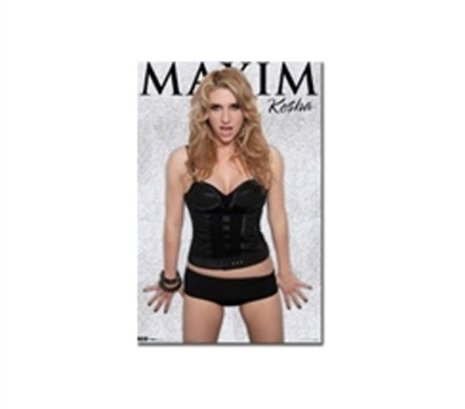 Looks Much Better Than A Blank Wall - Ke$ha - Maxim Poster - Great For Guys