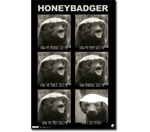 Honey Badger See Poster Supplies For Your Dorm Decorating Ideas College Products Dorms