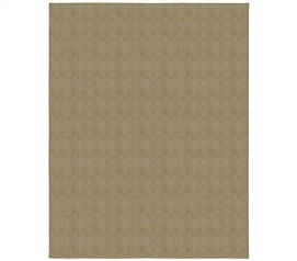 Crossroads Tan Rug