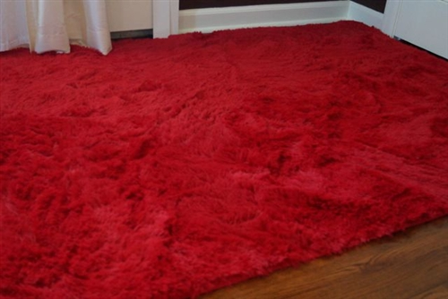 College Essential Plush Dorm Room Rug Redder Than Red