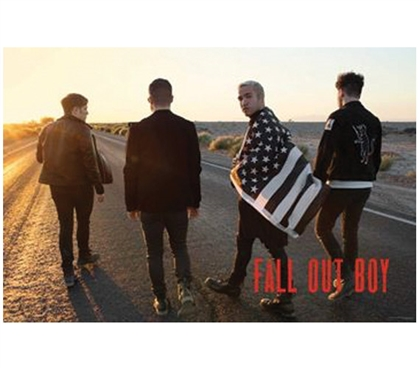 Fall Out Boy - Group Flag Poster