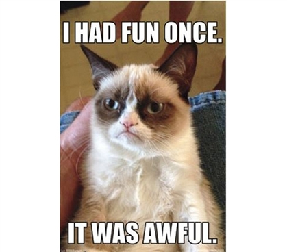 Buy Posters Online - Grumpy Cat - Fun Poster - Funny College Items