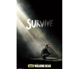 Shop For College - Walking Dead - Survive Poster - Decorate Your Dorm