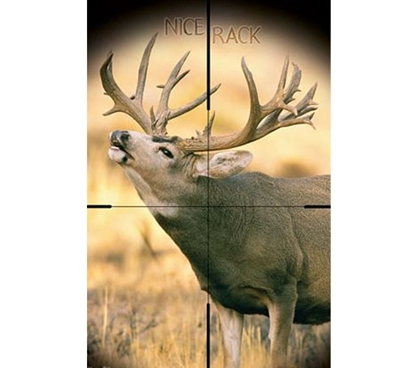 Fun College Supplies - Big Buck Poster - Decorate Your Dorm Room