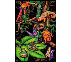 Decorate With Posters - Rainforest Blacklight Poster - Buy Dorm Supplies