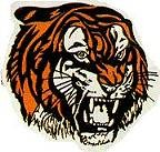 Martial Arts Accessories Patch Tiger Head
