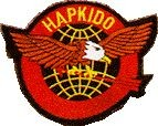 Martial Arts Accessories Patch Hapkido Eagle Globe