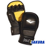 Martial Arts Equipment Everlast Striking Gloves
