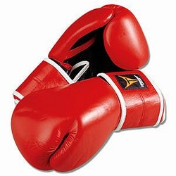 Martial Arts Equipment Thunder Boxing Gloves