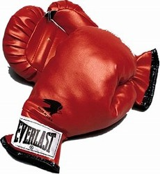 Martial Arts Equipment Youth Boxing Gloves