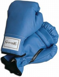Martial Arts Equipment Boxing Gloves Youth