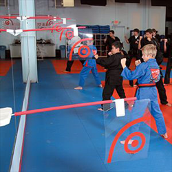 Martial Arts Equipment Training Target