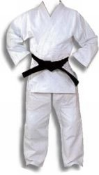 Martial Arts Uniform Judo Jujutsu Aikido Lite