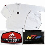 Martial Arts Uniforms Karate Adidas Adichamp TKD2