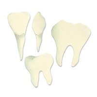 Ellison AllStar Die - Teeth (Molar, Incisor & Canine)