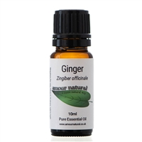 Ginger - 10ml