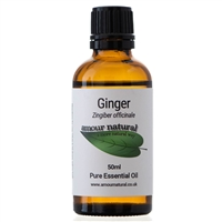 Ginger - 50ml
