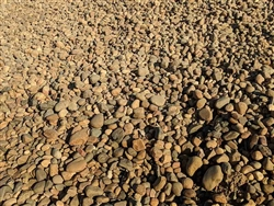 "Lodi Gold River Rock 4"" - 12"" Per Yard - River Stone"