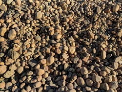 "Lodi Gold River Rock 4"" - 8"" Per Yard - River Rock Near Me"