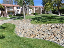 "Noiyo River Cobblestones 4"" to 8"" Per Yard - Landscape Rock Near Me"