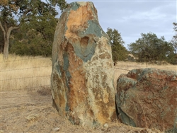 Sierra Blue Oak Landscape Boulders Rock Specimens
