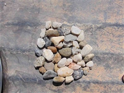 "Yuba Black & White Gravel Rock 1-1/2""x3/4"""